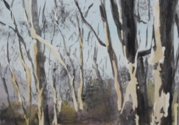 Cathy Burkinshaw - Woods in Winter