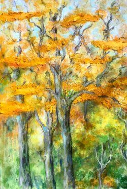 Fiona Goldbacher Autumn