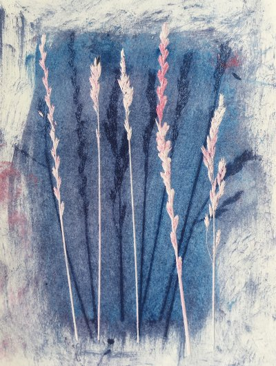 Blue and Pink Grass